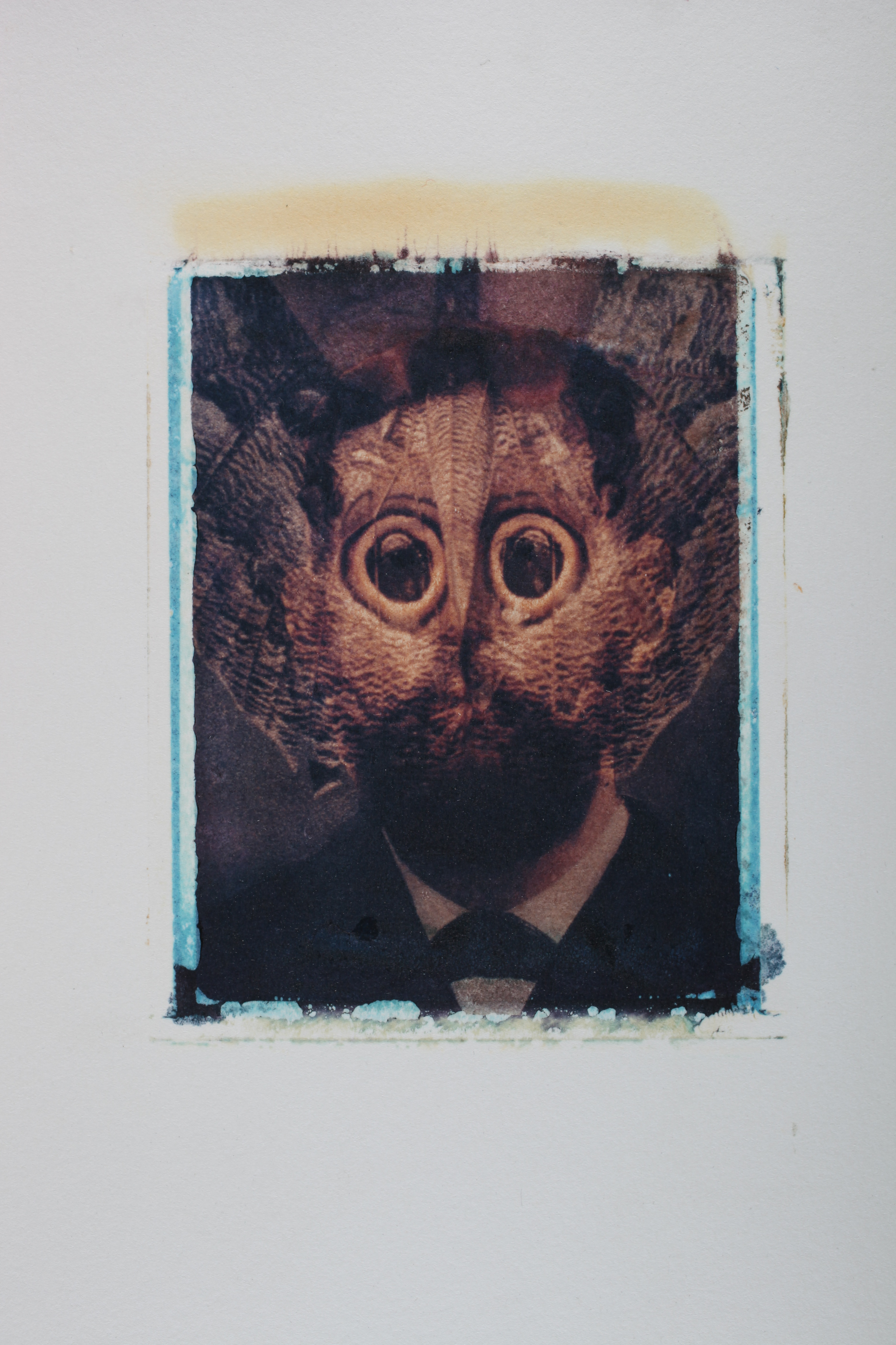 Multi-layered Polaroid image by Robert Seydel with man's bearded face and moth